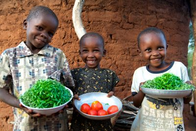 Food Price Surge In Kenya Causing Grief, Here's What It Tells Us About What's Wrong With African Cities