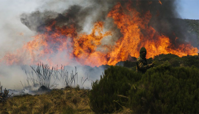 This Year Over 100 Forest Fires Have Been Reported In Mount Kenya, But A Really Big Is Raging Now: Why It's Burning And How They Can Be Stopped